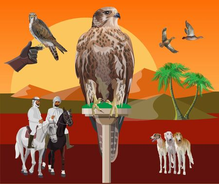 Falcon perching on a desert landscape background. Set of images animals and birds on the theme of falconry. Vector illustration in realistic style