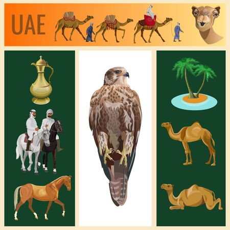Set of vector images animals and objects on the theme of the United Arab Emirates. Vector illustration in realistic style Stock Illustratie