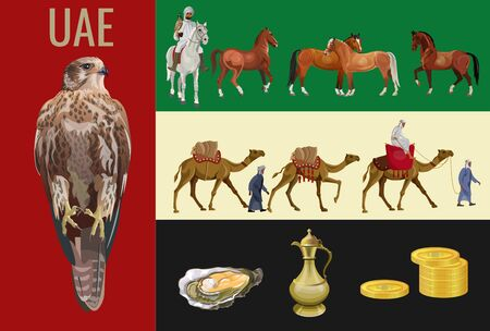 Traditional animals and objects of the United Arab Emirates: falcon, horses, camels, pearls and gold. Set of vector illustration