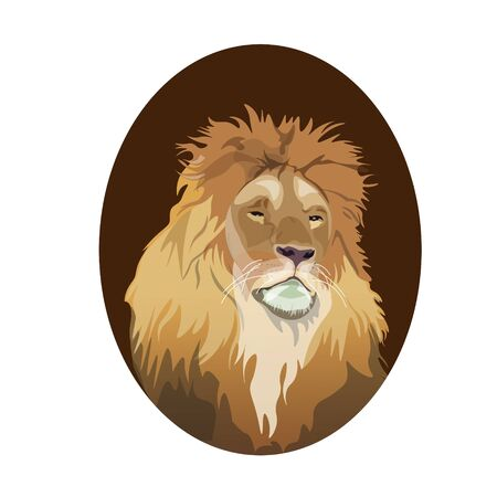 Male lion head portrait in oval frame. Vector illustration isolated on white background Ilustrace