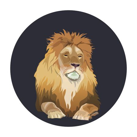Portrait of lying mature lion in circle frame. Vector illustration isolated on white background