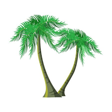 Two exotic palm trees. Vector illustration isolated on white background Ilustrace