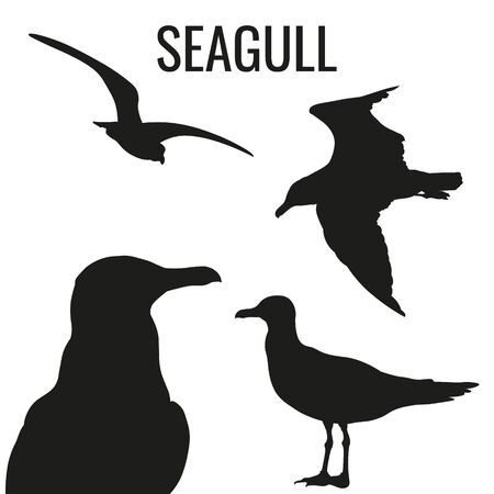Set of silhouettes of seagulls in various poses. Vector illustration isolated on white background Ilustrace