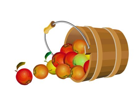 Apples scattered from an inverted wooden bucket. Vector illustration isolated on white background