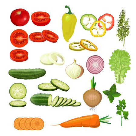 Set of various whole and chopped vegetables. Tomato, pepper, cucumber, onion, carrot and greenery. Vector illustration isolated on white background