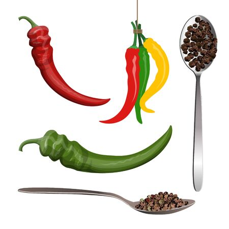 Hot pepper pods and black pepper peas in spoon. Vector illustration isolated on white background Ilustrace