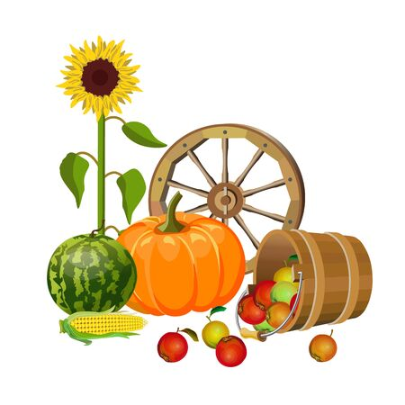 Autumn rural still life with wooden wheel, vegetables, fruits and sunflower. Vector illustration isolated on white background