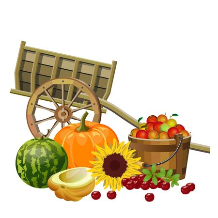 Autumn rural still life with wooden cart, vegetables, fruits and berries. Fall season decor. Vector illustration isolated on white background