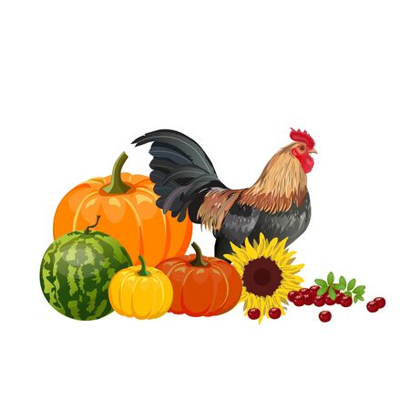 Autumn still life with vegetables and rooster. Fall season decor. Vector illustration isolated on white background