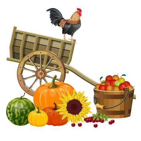 Autumn rural still life with rooster, wooden cart, vegetables and fruits. Vector illustration isolated on white background