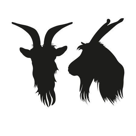 Silhouettes of goat head portrait front and side. Vector illustration isolated on white background