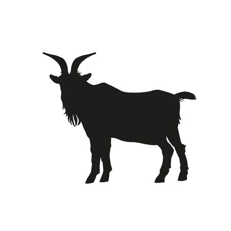 Black silhouette of goat standing side view. Vector illustration isolated on white background