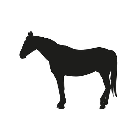 Silhouette of a standing horse side view. Vector illustration isolated on white background Çizim