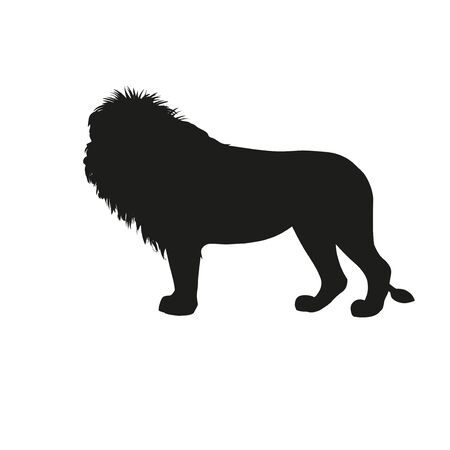 Silhouette of african lion standing side view. Vector illustration isolated on the white background
