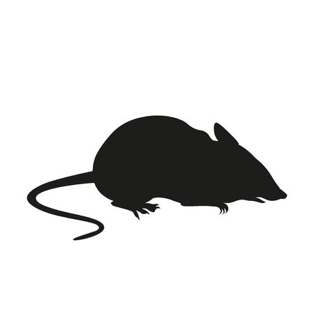 Silhouette of a seated domestic mouse, rat. Vector illustration isolated on white background