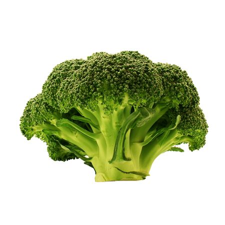 Fresh broccoli isolated on a white background photo