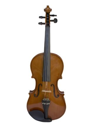 Violin on the white background front