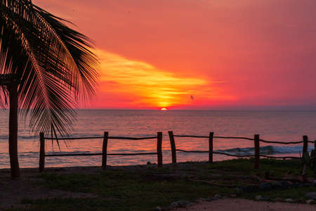 A vibrant tropical sunset on the beach in Mexico with Palm trees