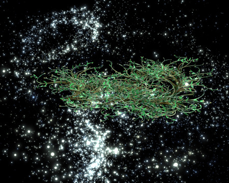 ornamental plant: Ornamental plant in the night sky a distant galaxy