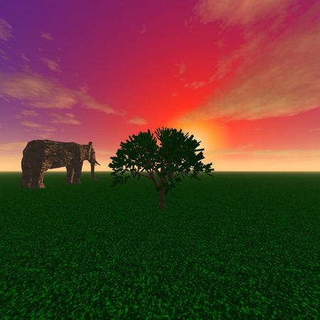 mysterious: 3d illustration: A mysterious elephant and tree at sunset Stock Photo