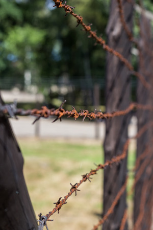 victim war: Barbed wire fence