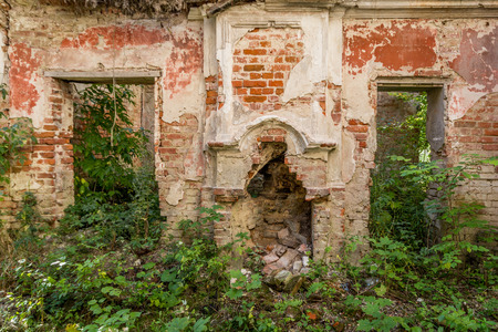 Destroyed room in the ruined palace of vegetation inside photo