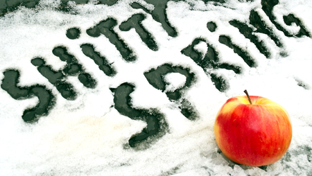 Angry inscription SHITTY SPRING written by a finger next to a ripe red apple on the snow - for those who are tired of the long winter and waiting for spring 版權商用圖片