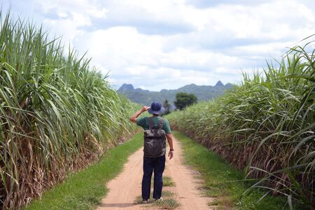 A vintage man backpacker is walking for travel in the country road jungle side summer time in Kanchanaburi, Thailand. Stock Photo