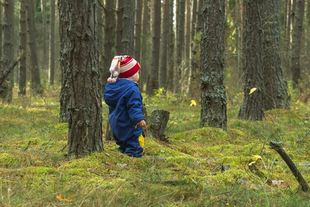 walking baby in the pine forest back view photo