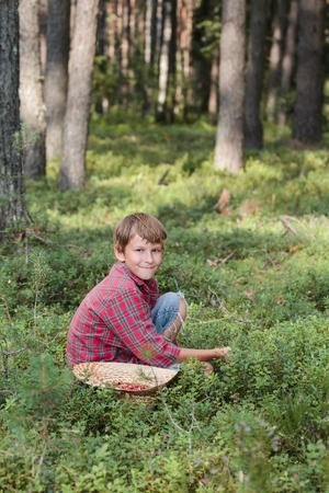 cull: Smiling boy picking fresh berries in a straw hat