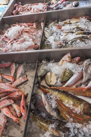 Fresh fish on bed of crushed ice on Greek island Kalymnos