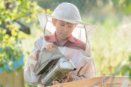 Teenage beekeeper is inspecting commercial bee yard photo
