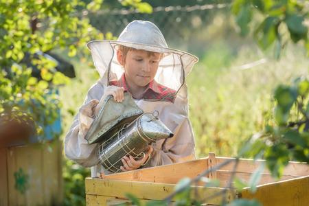 Teenage beekeeper smoking hive in a bee yard