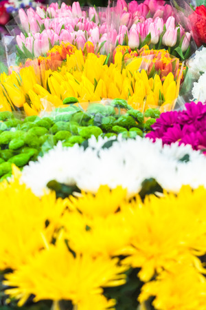 Colorful background of different flower kinds on local market
