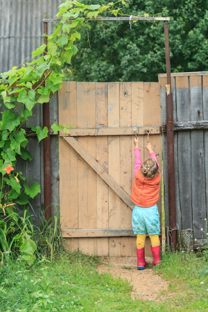 wicket door: Two year-old toddler girl is reaching up door swivel hook and opening wooden wicket gate Stock Photo