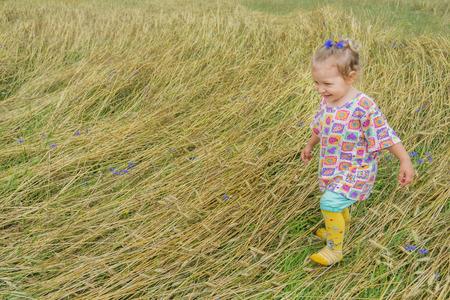 secale: Two years old preschooler girl is walking on annual plants field covering