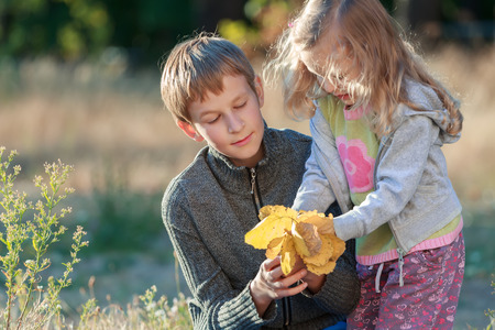 armful: Autumn park outdoors portrait of two sibling children examining light yellow armful of leaves Stock Photo
