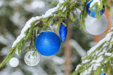christmas tree ball: Christmas holiday sparkling baubles silver and blue ornaments outdoors are on snowy fir branches