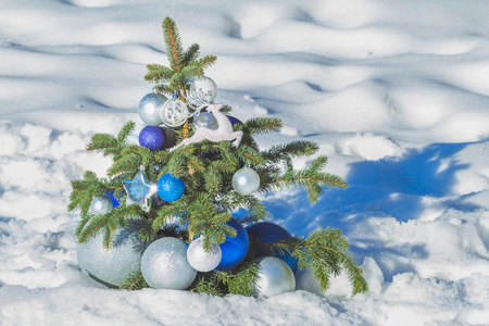 ultramarine blue: Natural spruce snowy tree decorated with Christmas bright ornaments and baubles of azure and silver