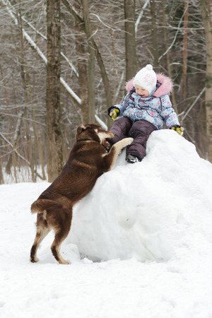 companion: Toddler girl is having winter fun on snowy hill with her dog companion