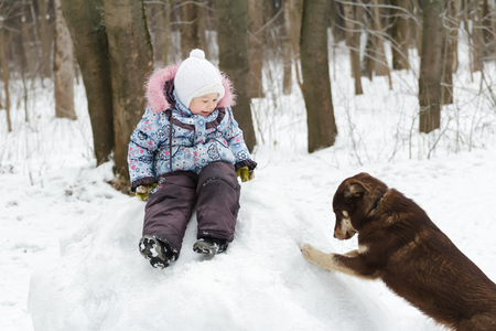 affinity: Preschooler girl is playing in winter park on snowy hill with best animal friend