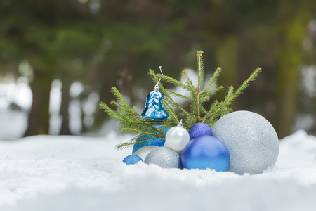 christmas ground: Fir sapling tree on snowy ground with Christmas silver and blue ornaments at the bottom