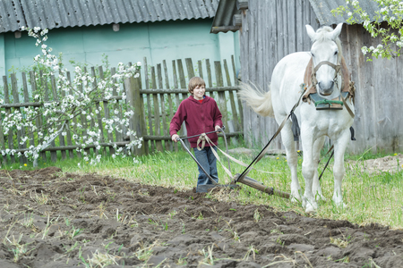 ploughing: Young farmer is tilling soil with traditional single-sided ploughing