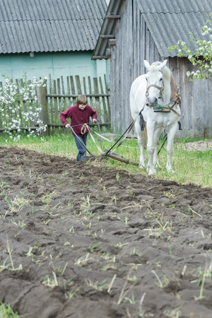 plough land: Teenage farmer boy is working land in traditional way with horse and plough