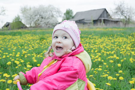 fuchsia color: Adorable toddler girl is driving pink and yellow tricycle across the spring blossoming dandelions meadow