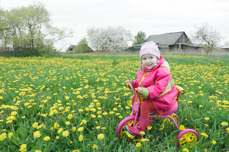 fuchsia color: Full length portrait of little girl is driving pink and yellow cycle across the spring blossoming dandelions meadow