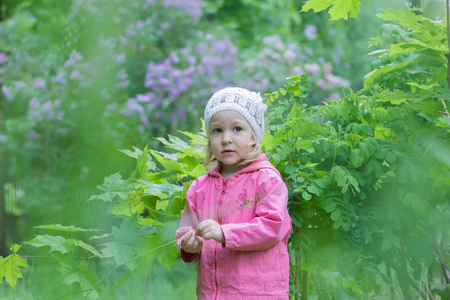 shrubbery: Two years old cute girl is wearing white knitted hat at green spring garden lilac shrubbery background