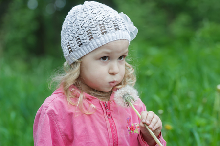 fair hair: Little girl with fair hair is blowing on white dandelion seed head