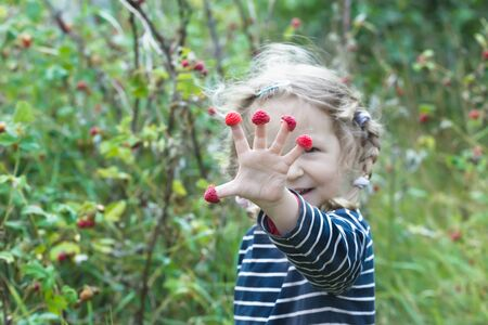 splayed: Excited two years old blonde girl is showing red garden raspberry fruits
