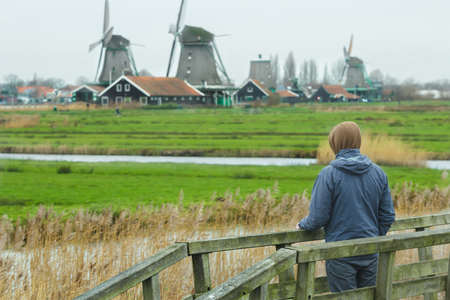 netherlandish: Man looking at rural landscape view with traditional Dutch windmills and old farm log houses